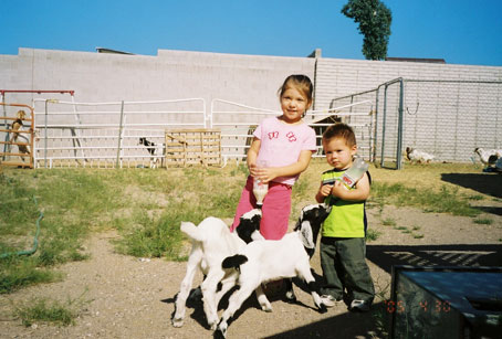 Amina and Adam bottle feeding baby goats